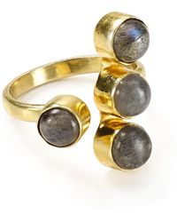 Argento Vivo - Labradorite Ring - Lyst