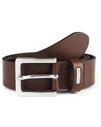 Calvin Klein Brown Leather Belt - Lyst