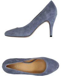 Shoe The Bear - Court - Lyst