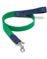 Mulberry 2Cm Dog Lead blue - Lyst