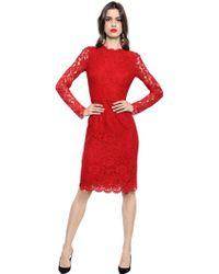 Dolce & Gabbana Cotton Blend Cordonetto Lace Dress - Lyst