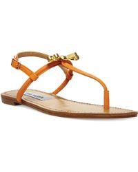Steve Madden Womens Daisey Flat Thong Sandals - Lyst