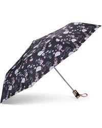 Adrienne Vittadini - Floral Two-tone Umbrella - Lyst
