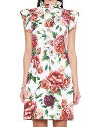 Dolce   Gabbana Stretch Silk Dress with Tiger-print in Black - Lyst ae2532838