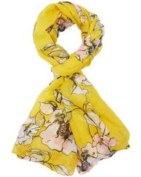 Charlotte Russe - Floral Scarf - Lyst