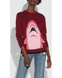 COACH - Sharky Intarsia Sweater - Lyst