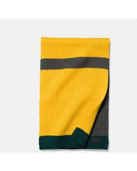 COACH - Stripe Knit Scarf - Lyst