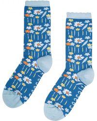 Seasalt   Womens Floral Feet Socks (ss17)   Lyst