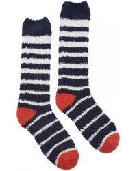 Joules - Fab Fluffy Womens Socks (x) - Lyst