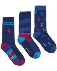 Joules - Striking 3 Pack Mens Cotton 3 Pack Sock S/s - Lyst