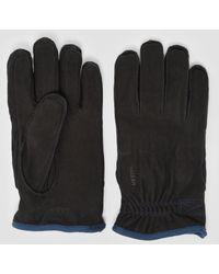Hestra - Tived Gloves - Lyst