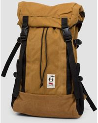 Chums - Mesquite Day Pack - Lyst
