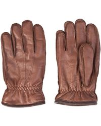 Hestra - Sport Classic Örnberg Elk Leather Gloves Chestnut - Lyst