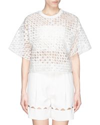 3.1 Phillip Lim Caning Embroidery Sheer Boxy Top - Lyst