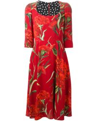 Dolce & Gabbana Carnations Print Dress - Lyst