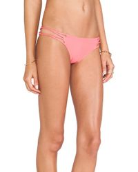 Acacia Swimwear Pink Maui Bottom - Lyst