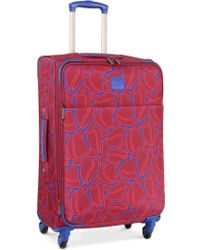 "Diane von Furstenberg - Closeout! 70% Off Amor 24"" Spinner Suitcase, Only At Macy's - Lyst"