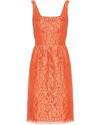 Issa Cottonblend Lace Dress - Lyst
