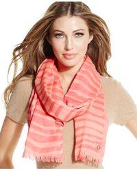 Calvin Klein Zebra Jacquard Colorblock Pashmina - Lyst