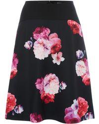 Ellen Tracy - Floral Skirt - Lyst