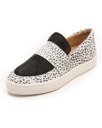 Loeffler Randall Irini Haircalf Sneakers  Whiteblack - Lyst