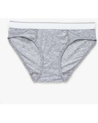 Need Supply Co. The Echo Park Brief - Lyst
