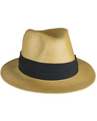 Morgan Taylor - Woven Paper Fedora With Pug Trim - Lyst
