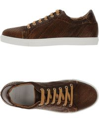 PDO - Low-tops & Trainers - Lyst