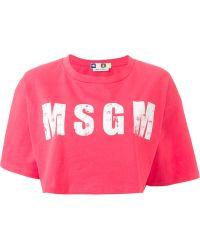 MSGM Cropped Logo Print T-Shirt - Lyst