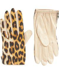 3.1 Phillip Lim - Leopard Driving Gloves - Lyst