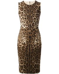 Dolce & Gabbana Leopard Print Fitted Dress animal - Lyst
