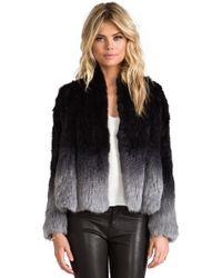 Elliatt   Angel Rabbit Fur Jacket   Lyst
