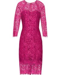 Lela Rose Pink Lace Dress - Lyst