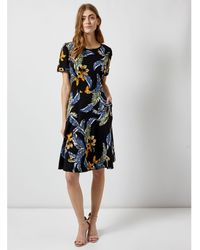 3f1b00e1fd913 Dorothy Perkins Curve Ditsy Print Empire Jersey Midi Dress in Black ...