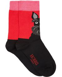 Hobbs - Red 'scotty' Dog Socks - Lyst