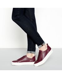 J By Jasper Conran - Wine Red Flatform Cleated Heel Trainers - Lyst