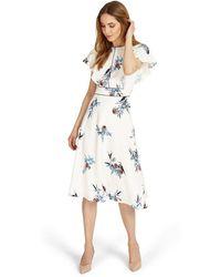 Phase Eight - Gwyneth Dress - Lyst