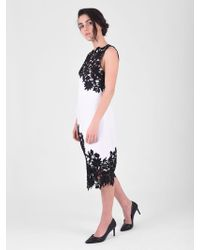 Alice + Olivia - Contrasting Lace Inserts Dress - Lyst