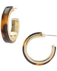 Dillard's - Tortoise Hoop Earrings - Lyst