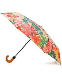 Patricia Nash - Spring Collection Magliano Umbrella - Lyst