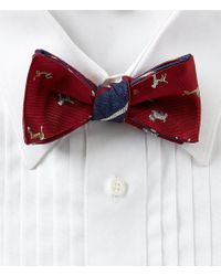 Brooks Brothers - Dog With Stripes Reversible Bow Tie - Lyst