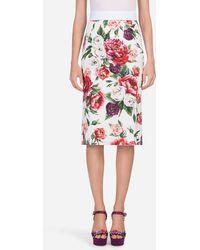 Dolce & Gabbana - Peony-print Cady Skirt - Lyst