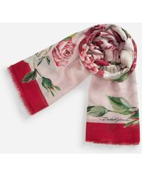 Dolce & Gabbana - Printed Silk And Cashmere Scarf (140 X 140) - Lyst