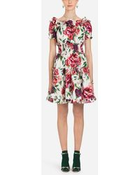Dolce & Gabbana - Cotton Dress In Peony Print - Lyst