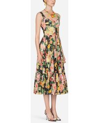 b20a51ff Dolce & Gabbana - Printed Cotton Dress - Lyst