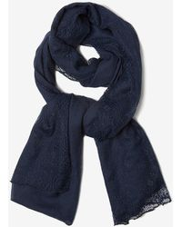 Dorothy Perkins - Navy Fine Lace Scarf - Lyst