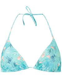 Dorothy Perkins - Dp Beach Green Flamingo Print Triangle Bikini Top - Lyst