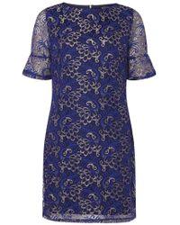 Dorothy Perkins - Cobalt Shimmer Lace Shift Dress - Lyst