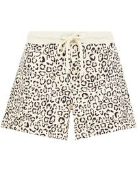 Dorothy Perkins - Multicolour Animal Print Loop Back Shorts - Lyst