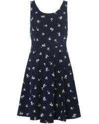 Dorothy Perkins - Navy Tropical Print Seamed Fit And Flare Dress - Lyst